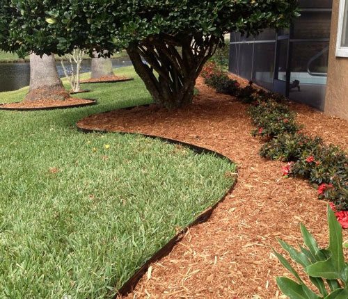 9 Best Lawn Edging (2019) - Buyer's Guide & Reviews